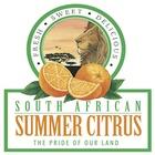 South African Summer Citrus
